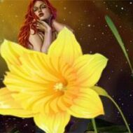 Жил-был Цветок