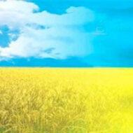 Я люблю тебя, моя Украина!