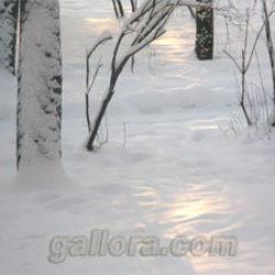Рассуждения о зиме или 10 причин, по которым можно полюбить зиму.