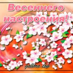 В мир вошла весна