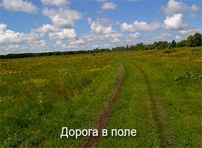 дорога-в-поле