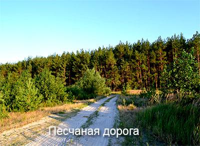песчаная-дорога