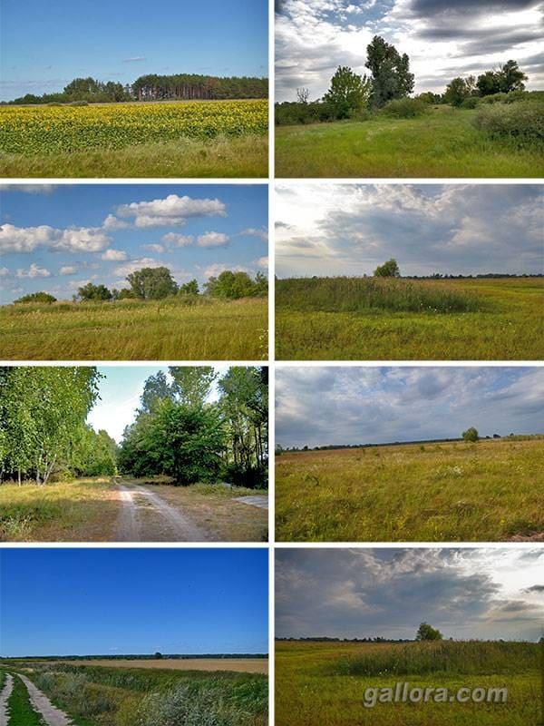 Деснянские пейзажи природы