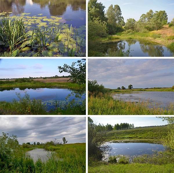 Деснянкие пейзажи с озерами